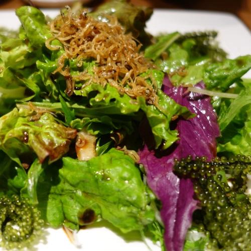 蕎麦居酒屋「彩海」の海ぶどうサラダ