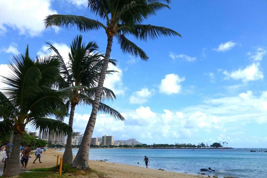 ハワイのおすすめビーチ「アラモアナビーチ」