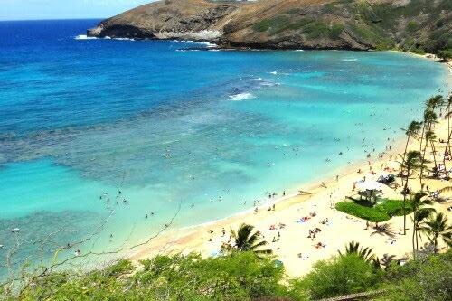 ハワイカイの観光スポット①ハナウマ湾