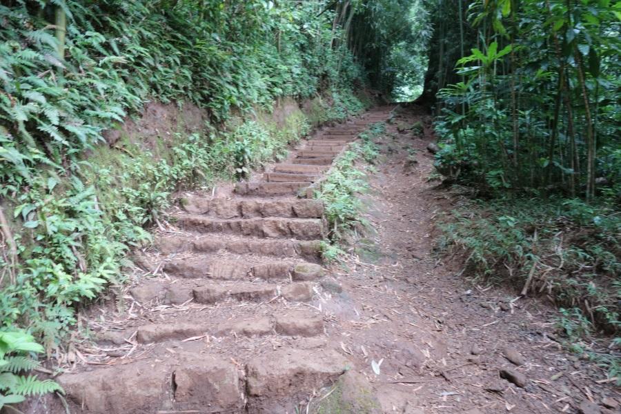 マノアの滝のトレッキングコースの階段