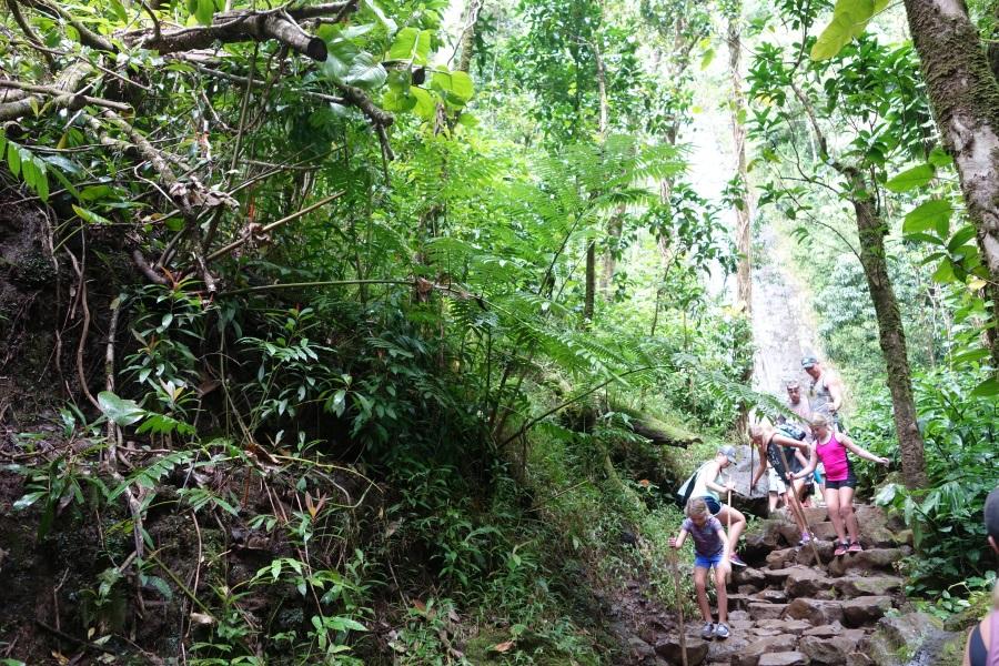 ハワイのおすすめオプショナルツアー「マノアの滝」