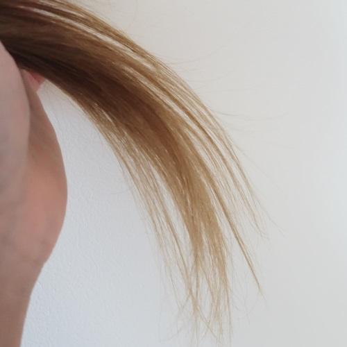 メルヴィータのオイルを使う前の髪