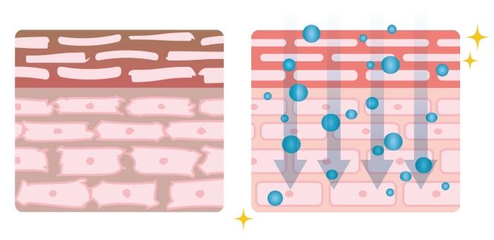 ナノスチームが角質層に届くイメージ