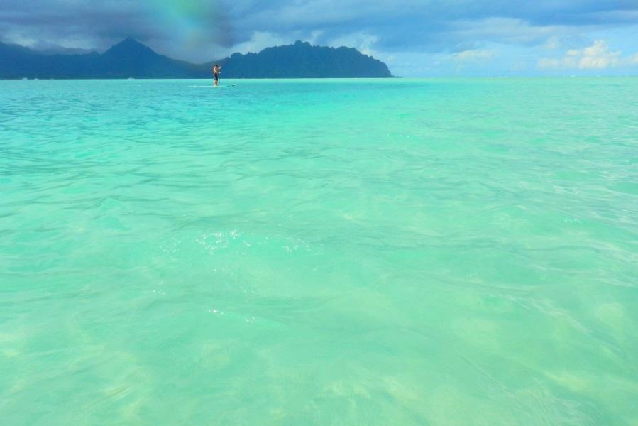 ハワイのおすすめオプショナルツアー「サンドバー」