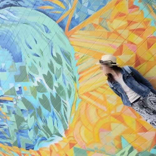 ピンクピルボックスのオプショナルツアーに組み込まれている観光スポット「カカアコ」