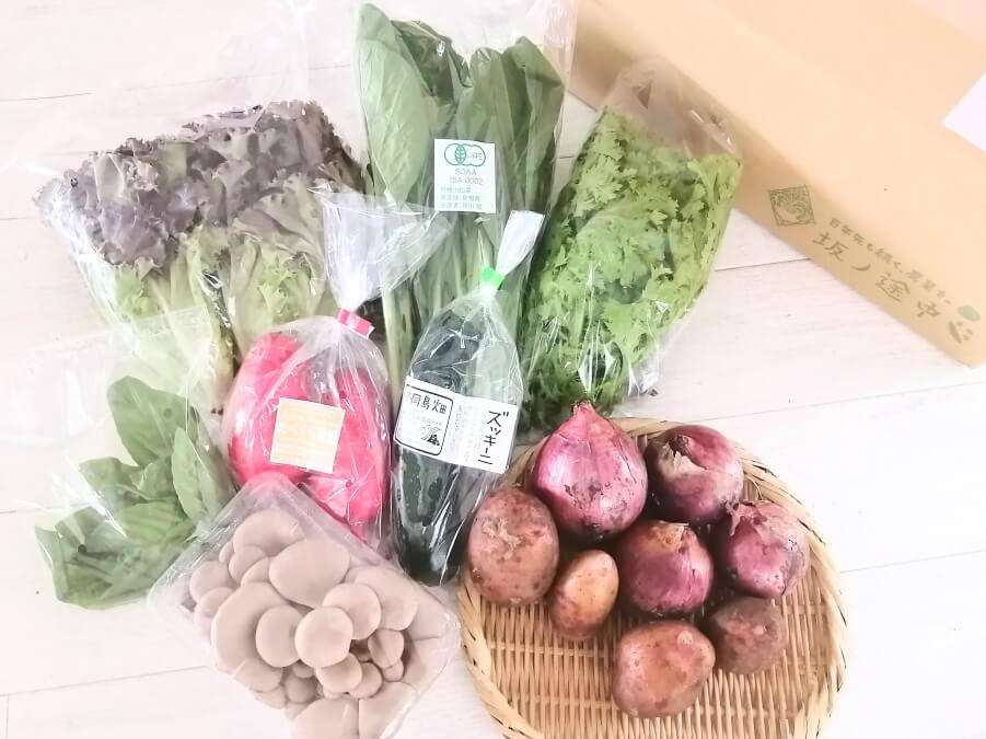 坂ノ途中の旬のお野菜セット