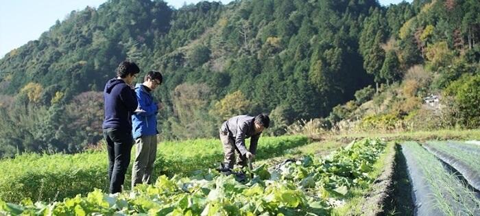 坂ノ途中の持続可能な農業