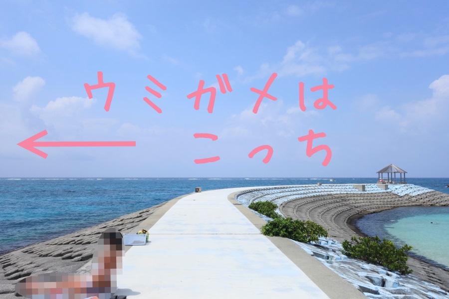 わいわいビーチの防波堤
