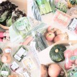 おすすめの野菜宅配の比較