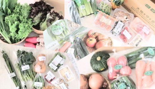 8個の野菜宅配を徹底比較!【おすすめベスト3はこれ!】